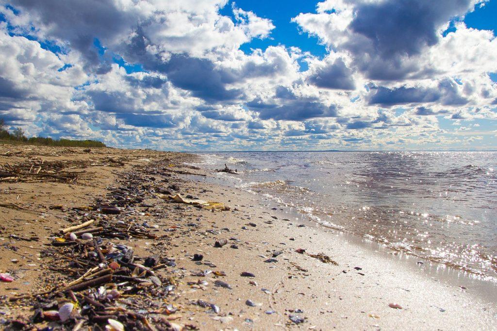 beach waste